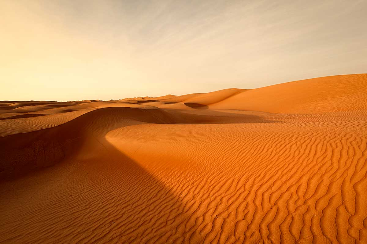 Emirats Arabes Unis - Oman - Circuit Essences d'Arabie