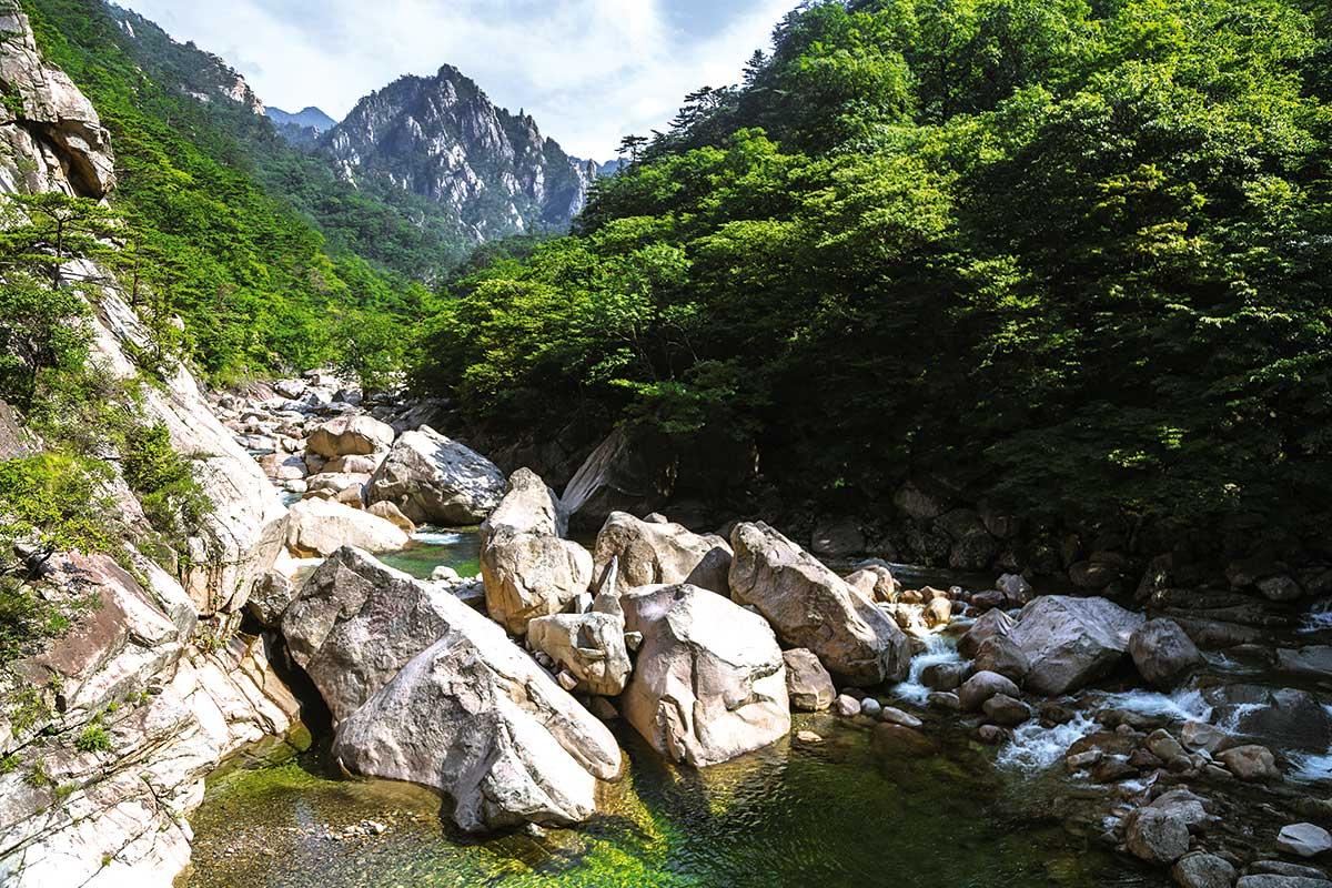 Parc National de Jirisan