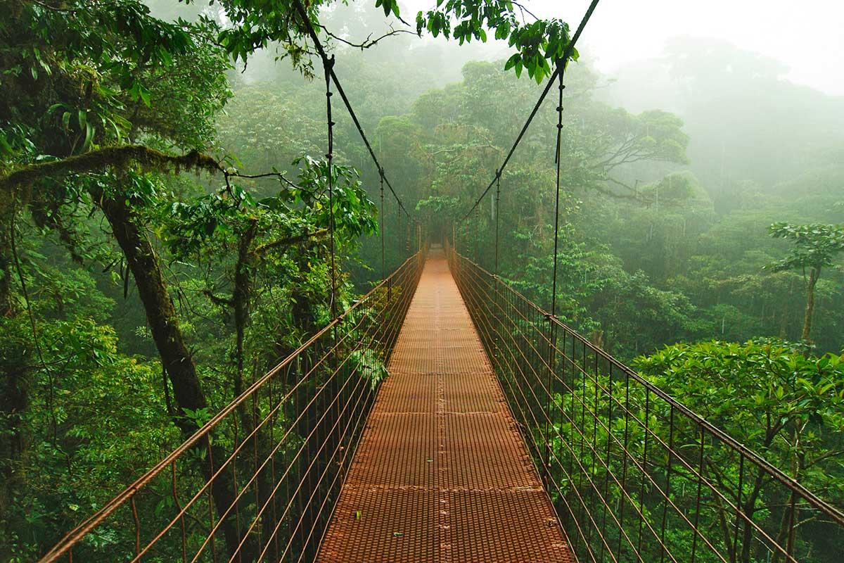 Réserve de Monteverde