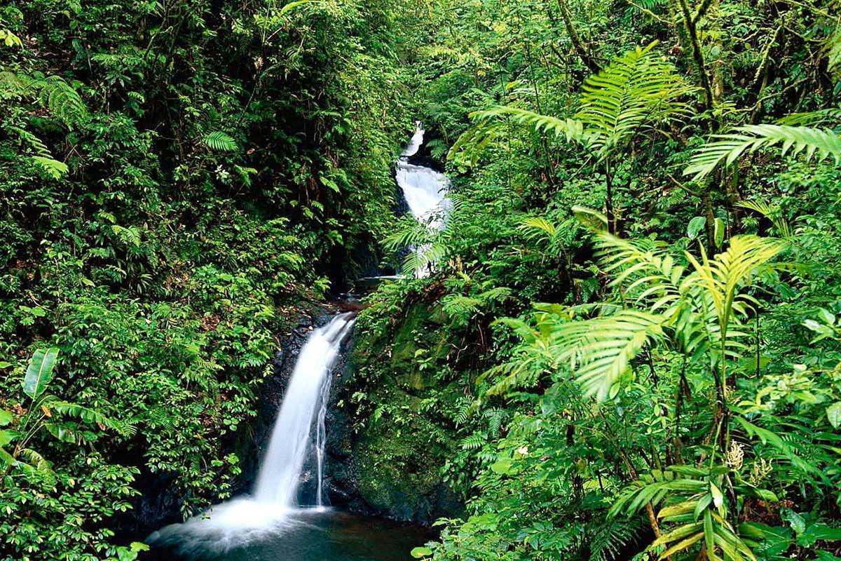 CRICT005_monteverde cascade autotours circuits costa rica tui
