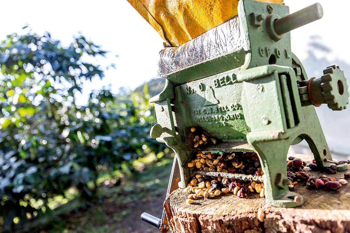 Costa Rica - Circuit Costa Rica Nature et Extension à Guanacaste