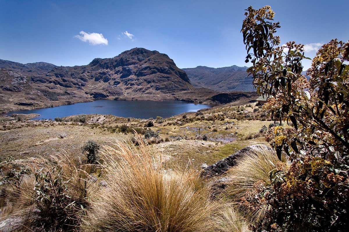 ECUCT006 parc-national-de-cajas-circuits-equateur-galapagos-tui