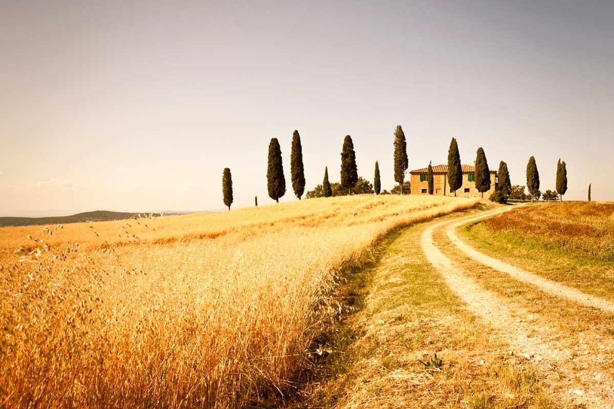 Circuit Au cur de la Toscane