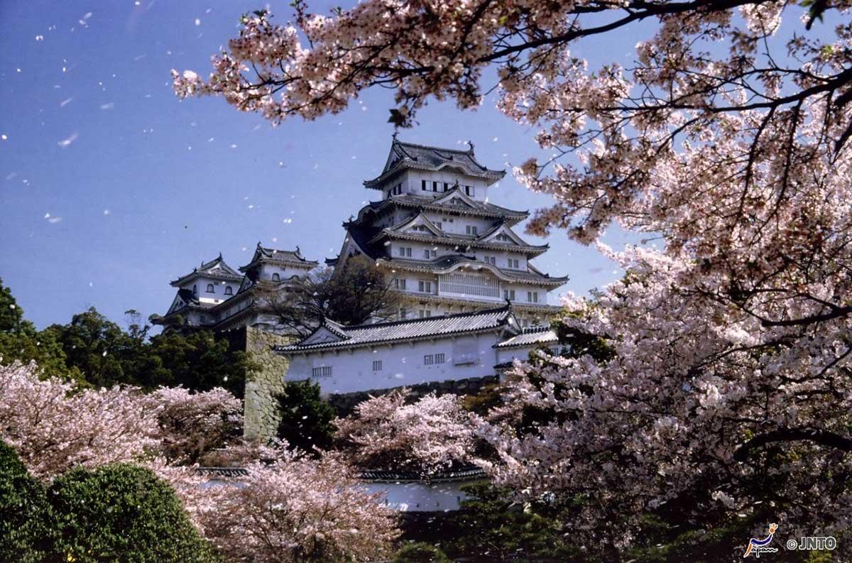 Circuit Grande découverte du Japon - voyage  - sejour