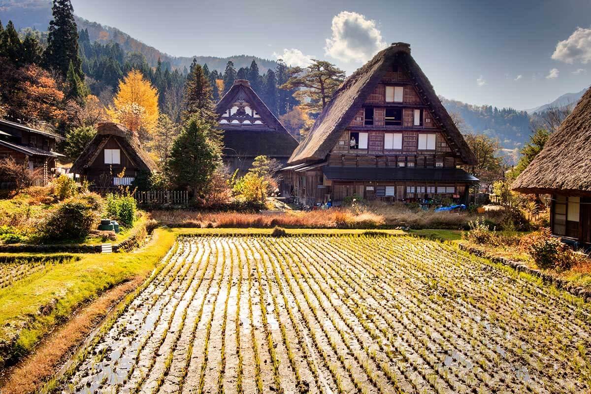 Les maisons aux toits de chaume de Shirakawago