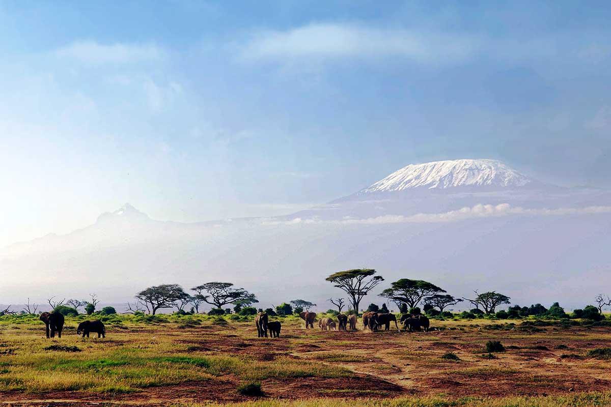 Kenya gratuit datant en ligne