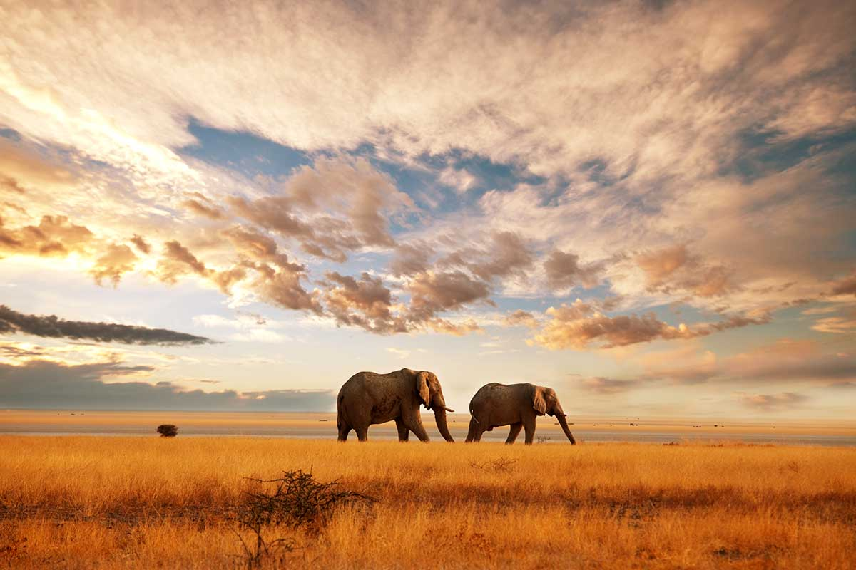 Speed datation Mackay QLD