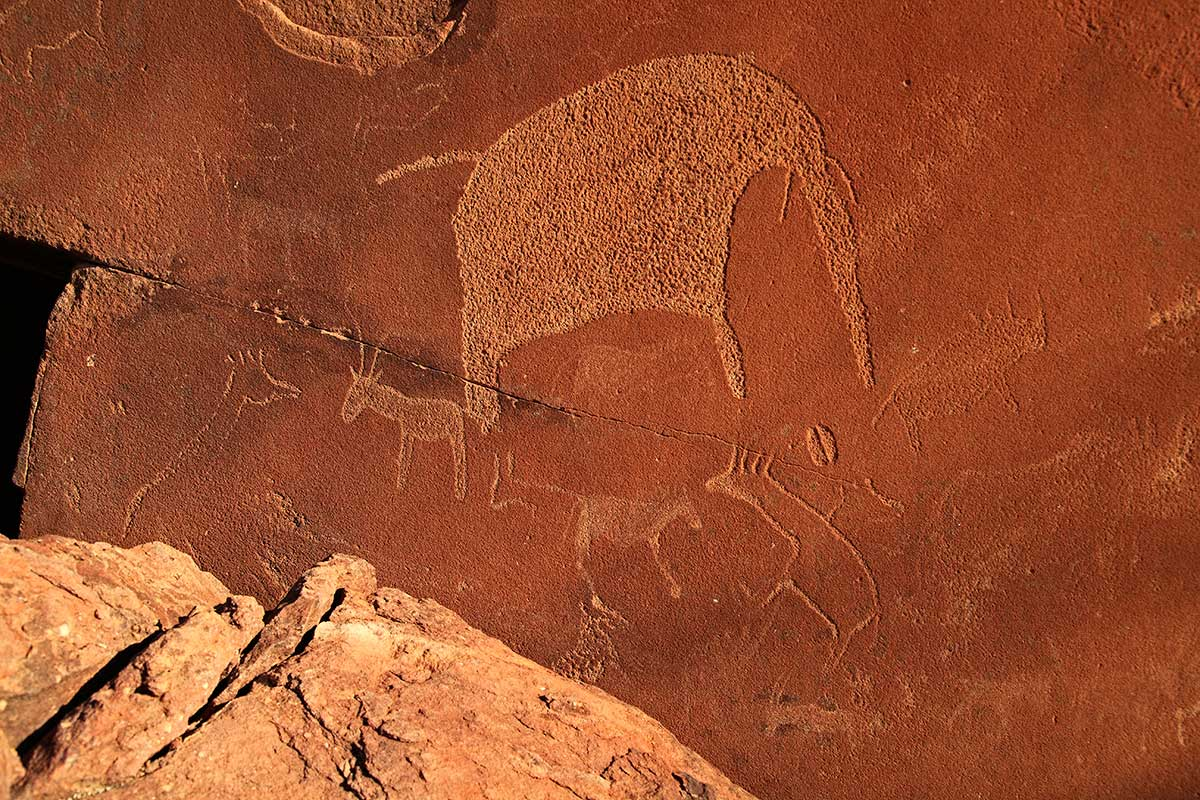Photo n° 11 Circuit Visage de Namibie