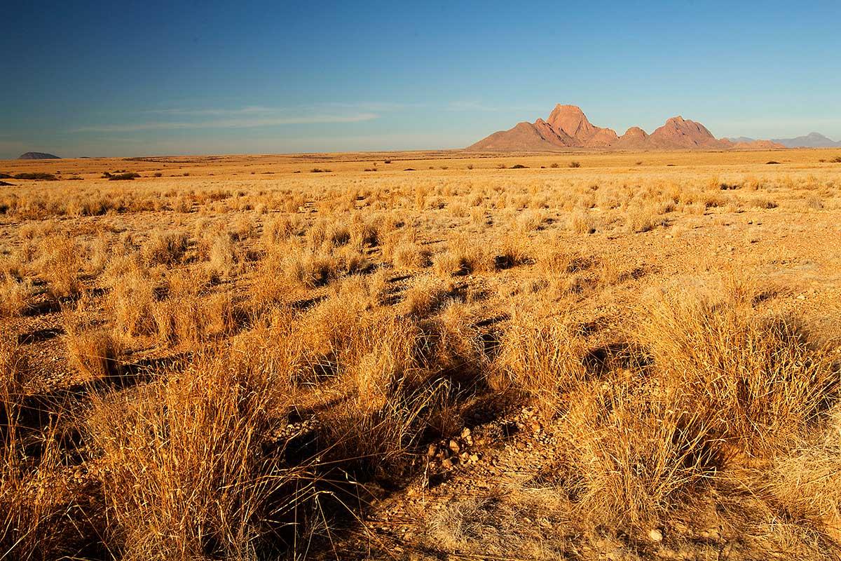 Circuit Pays Himba, dunes et réserves de Namibie, Windhoek