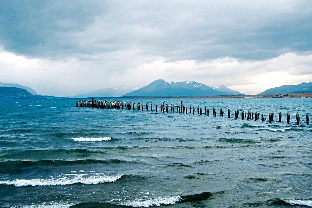 Photo n° 5 Circuit De la Patagonie à la Terre de feu