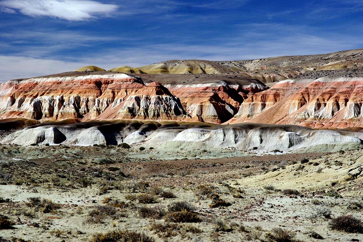 Photo n° 14 Circuit De la Patagonie à la Terre de feu