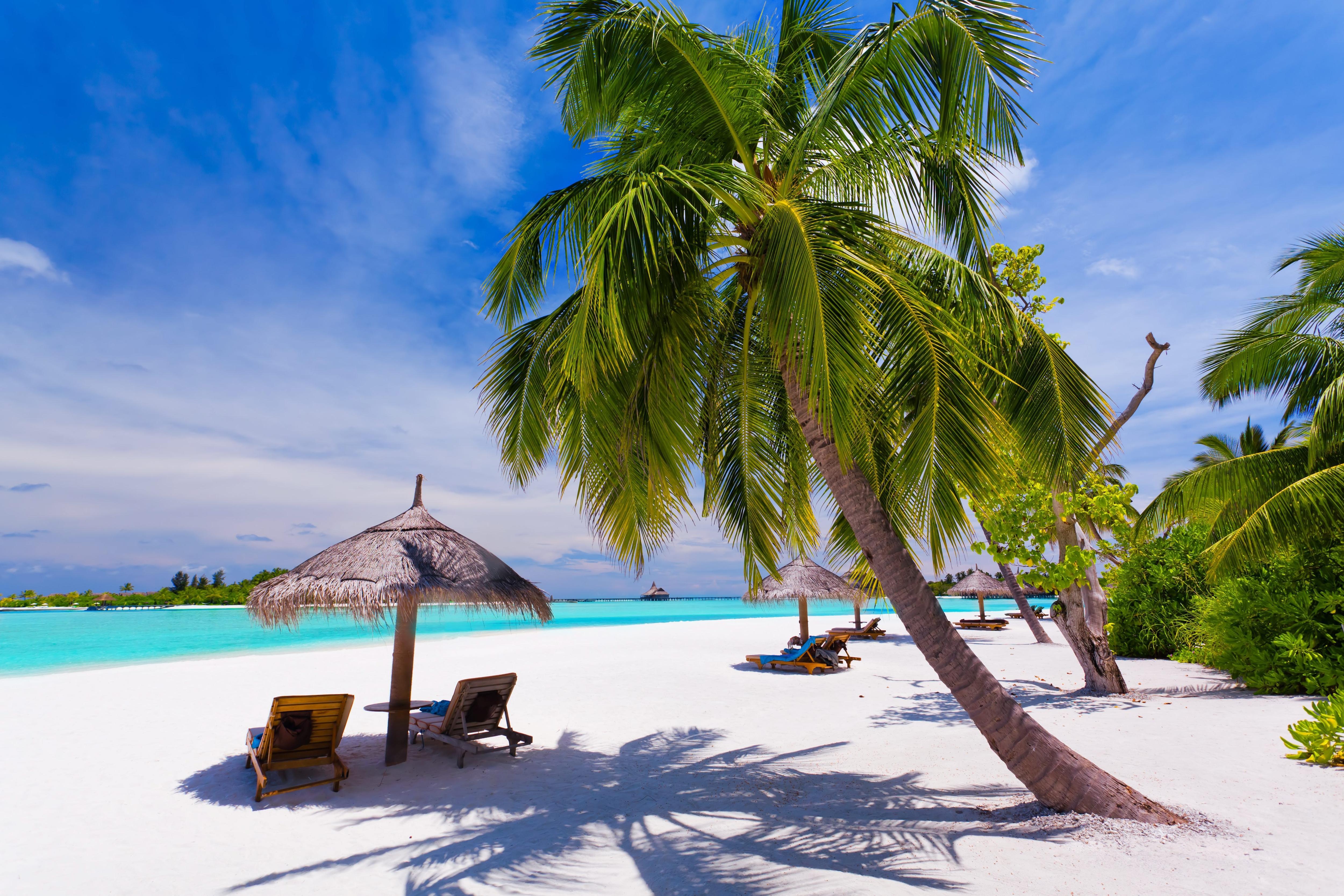 Ile de Zanzibar