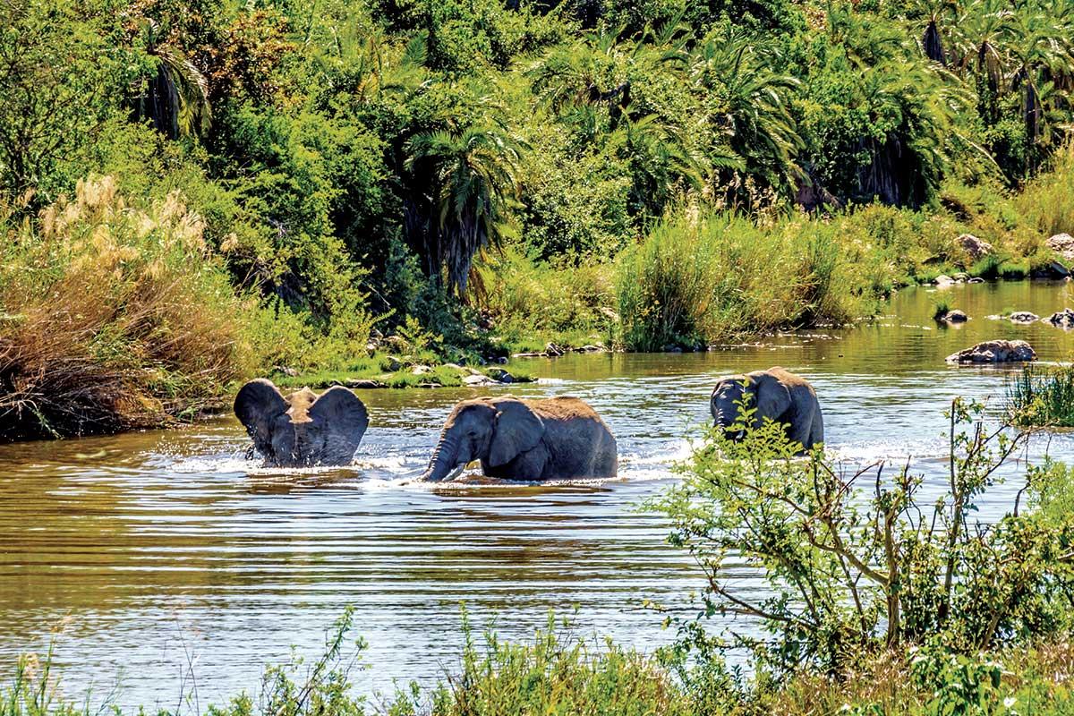 Afrique du Sud - Swaziland-Eswatini - Circuit Voyage au pays arc-en-ciel, le grand tour de l'Afrique du Sud