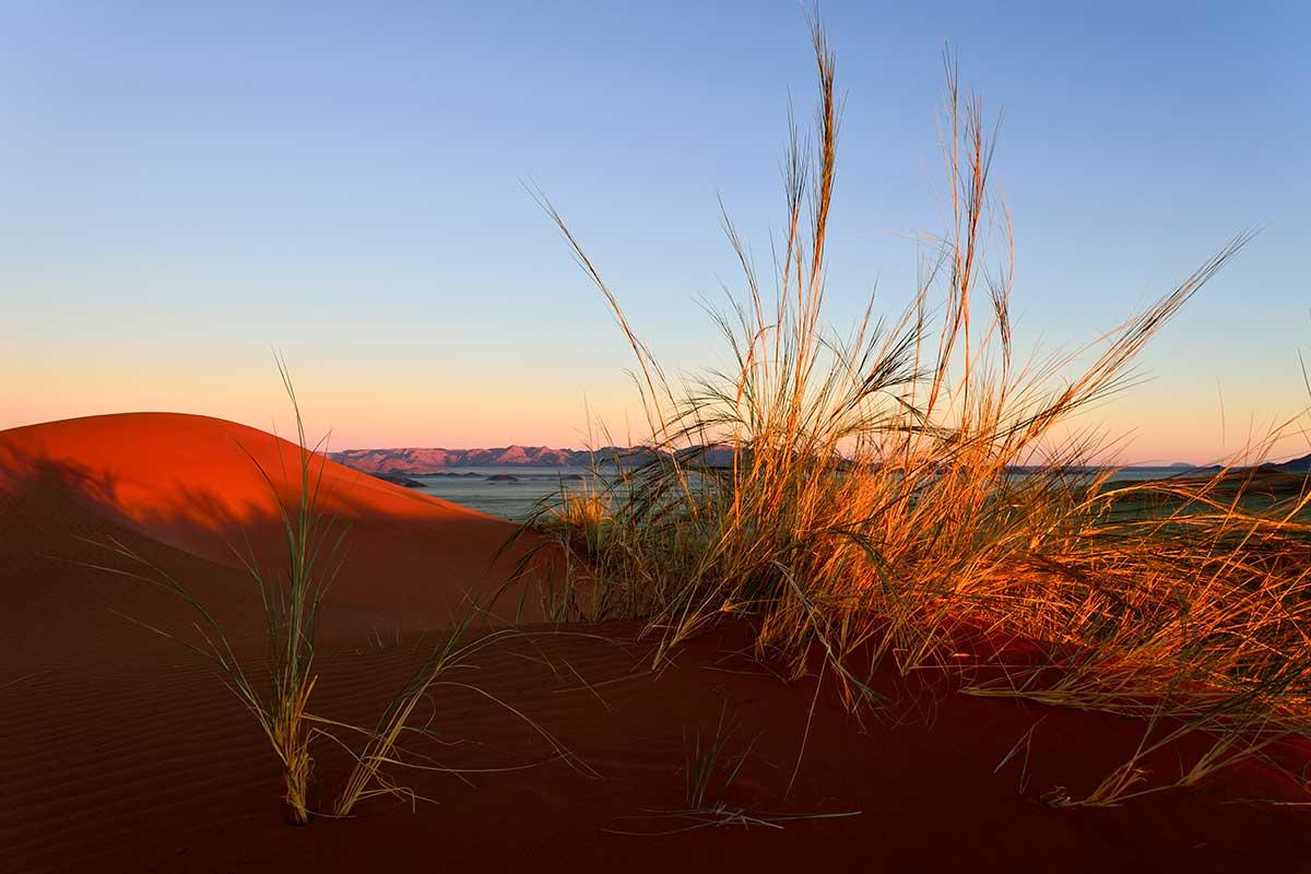 Circuit Envolée en terres australes : du Cap au désert du Namib